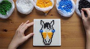 My Pixel for a Horse